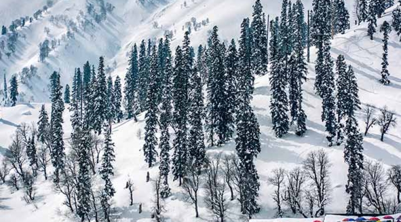 Pahalgam To Gulmarg – Paradise For Nature Lovers!