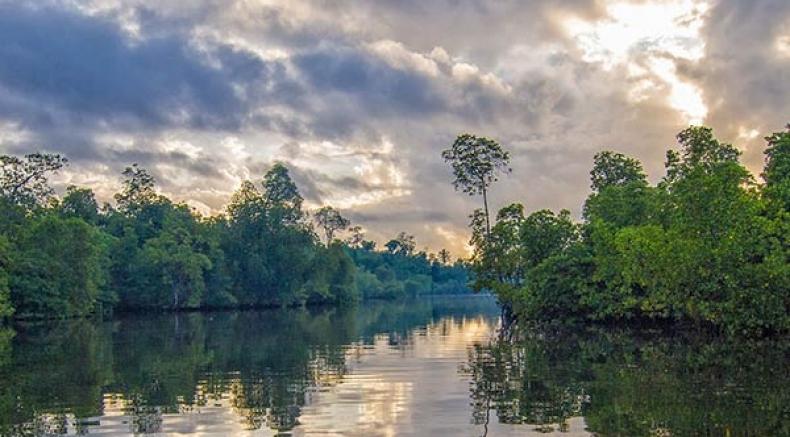 Kolkata To Henry's Island – Amid Pristine Beaches And Rich Wildlife