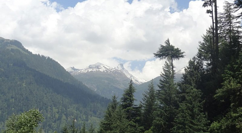 A Visit To Pulga: This Secluded Village In Himachal Pradesh Is Perfect For Solo Trips