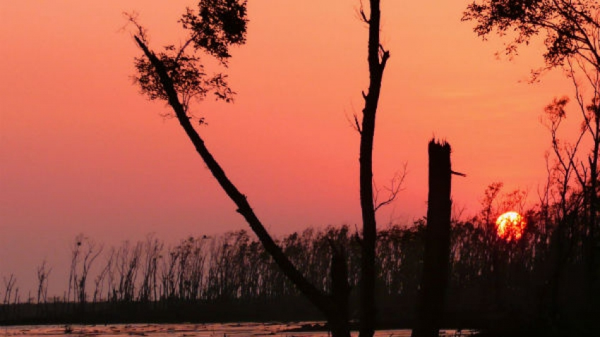10 Incredible Places To Visit In West Bengal In August