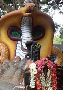 கட்டி சுப்பிரமணிய கோயில்