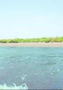 భావ నగర్