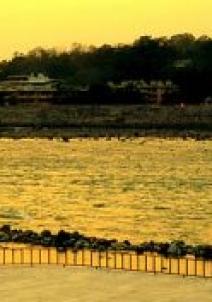 రిషికేశ్