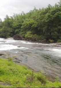 நீலம்பூர்