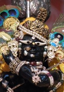 விருந்தாவன்