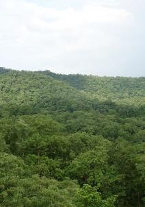 கபிர்தாம்
