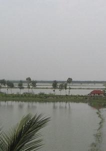 ബഖാലി