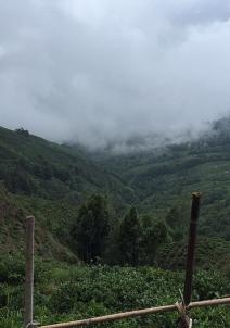 ದಾರ್ಜೀಲಿಂಗ