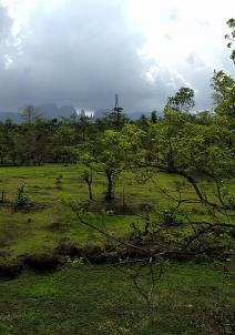 இகத்புரி