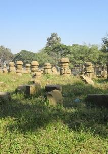 दीमापुर