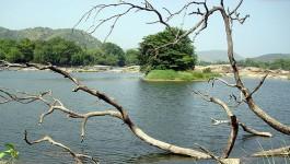 ഗാലിബോര്