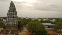 சிவகாசி
