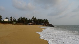 മംഗലാപുരം