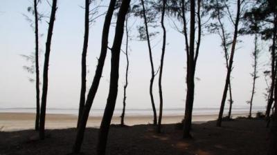 சூரத்
