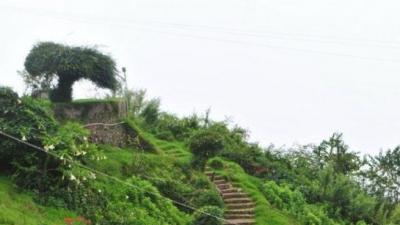 கோக்கர்ஸ் வாக்