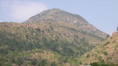 അണ്ണാമല