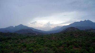 சின்னார் வனவிலங்கு சரணாலயம்