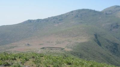 దేవమాలి