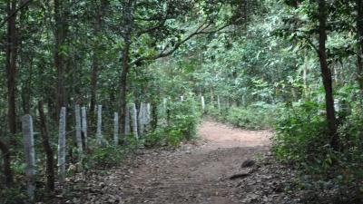 അഗുംബെ