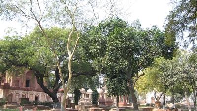 रोमन कैथोलिक कब्रिस्तान