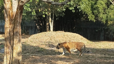 Sepahijala Wildlife Sanctuary