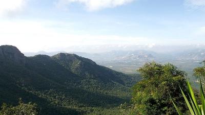 तिरुमाला