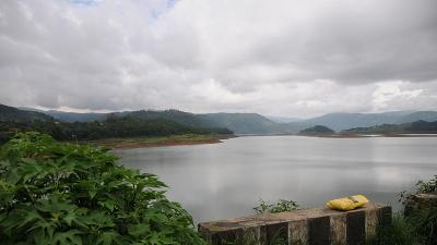 റി ഭോയ്