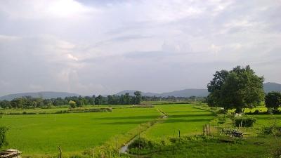 കാങ്കര്