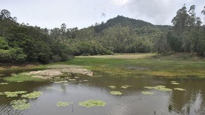 बेरीजम झील