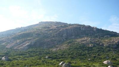 కనివే నారాయణపుర పట్టణం