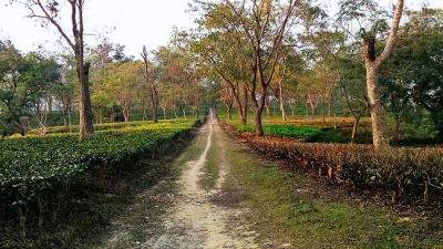 காந்திபாக் பார்க்