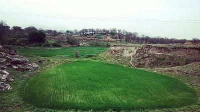 ഹരിപൂര് - ഗുലേര്