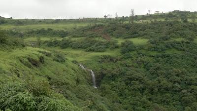 महल बरदीपुरा वन
