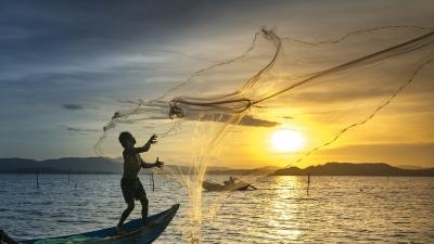मछली पकड़ना