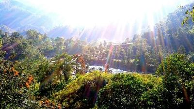 സരംസ ഗാര്ഡന്