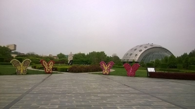 ಚಿಟ್ಟೆಗಳ ಸಂಗ್ರಹಾಲಯ (Butterfly Museum)