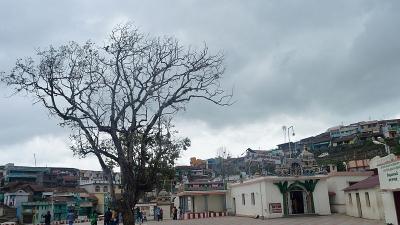 മാവൂത്ത്
