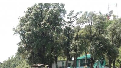 സൈറാത് പിര് ഫസല് ഷാ സാഹിബ്