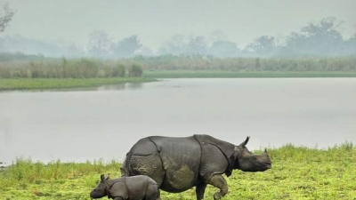 Bornadi Wildlife Sanctuary