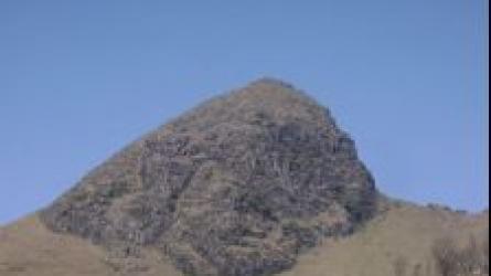 முக்கூர்த்தி