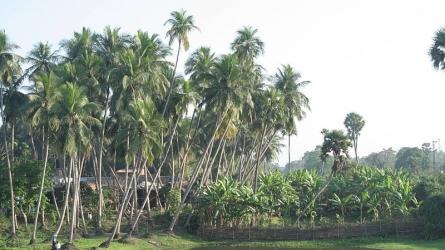 ரகுராஜ்பூர்