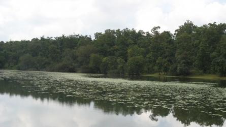 कवडी झील
