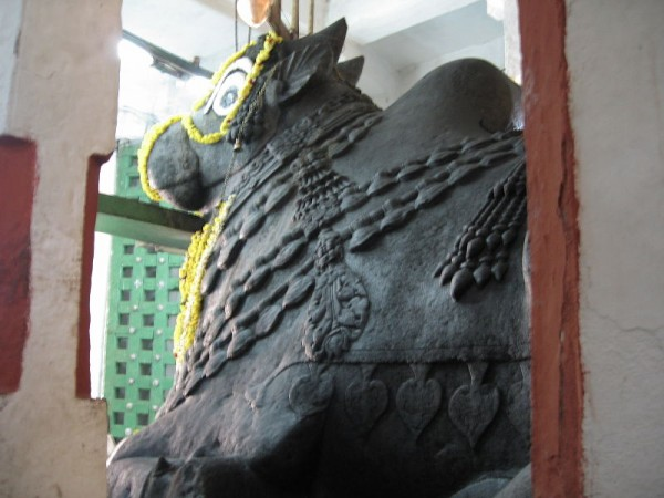 Bangalore photos, Bull temple
