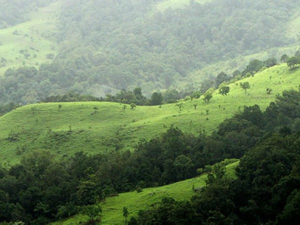 Kudremukh Photos - A View Of The Hills