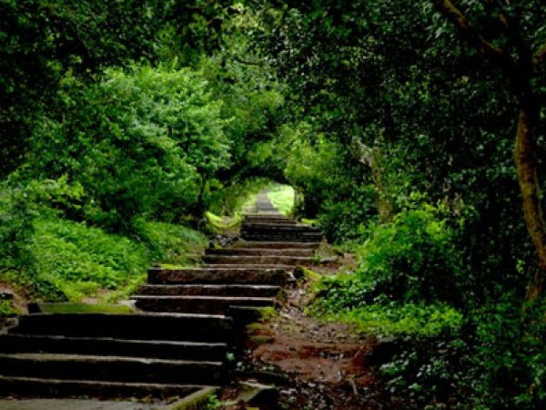 Nandi Hills Photos - A Scenic Stair Way
