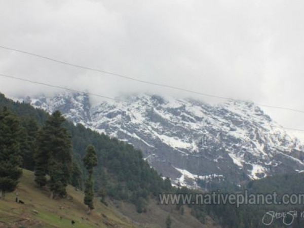 Gulmarg photos, Kashmir - Gulmarg - Snow Peaks