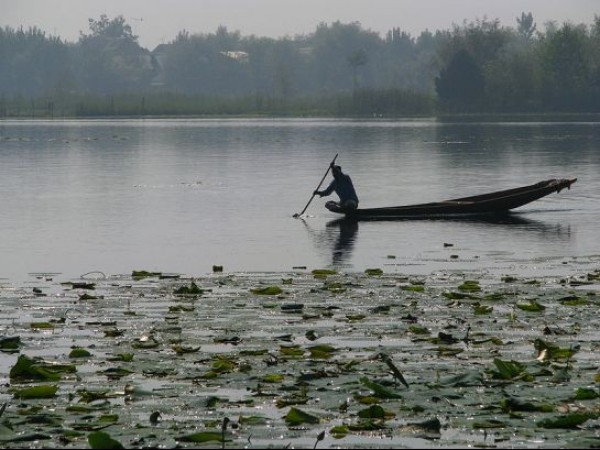 Srinagar photos, Nagin Lake - Rowing at the Lake