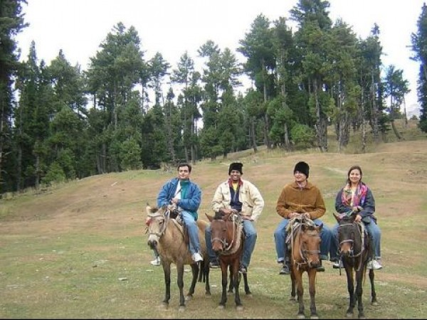 Pahalgam photos, Horse Riding (Pony Ride)