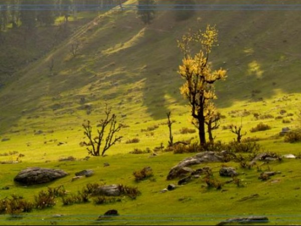Pahalgam photos, Aru