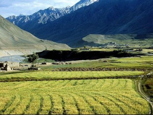 Kargil photos, Karsha Monastery